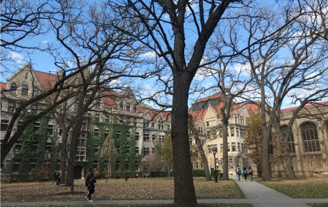 University of Chicago Experience